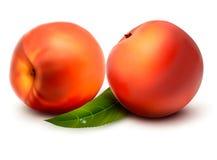 Free Two Fresh Sweet Peach Royalty Free Stock Photo - 27543275