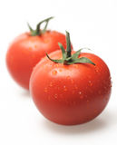 Two fresh tomatoes. Tomato red close up isolated red color Stock Photography