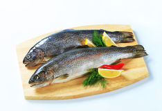 Two fresh trout. On a cutting board stock image