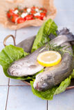 Two fresh trout fish in an old pan Stock Image
