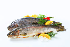 Two fresh trout Stock Photo