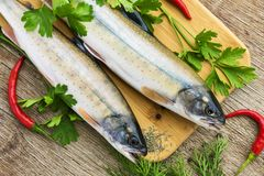 Two fresh uncooked fish one kind of salmon with aromatic herbs on wooden cutting board Royalty Free Stock Images
