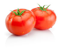 Two Fresh wet tomatoes  on white background Stock Photos