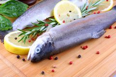 Two fresh whole trout with species on bamboo board Royalty Free Stock Images