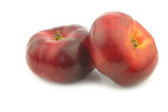 Two fresh wild flat nectarines Royalty Free Stock Photography