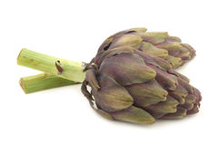 Two freshly cut artichoke halves Stock Photos