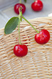 Two freshly picked cherries Stock Images