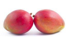 Two freshness mango on white. Background Royalty Free Stock Image
