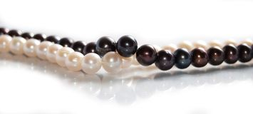Two Freshwater Pearl Necklaces Royalty Free Stock Photo