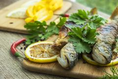 Two fried fish of kind of salmon with aromatic herbs and lemon Royalty Free Stock Photo