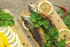 Two fried fish of kind of salmon with aromatic herbs and lemon Stock Photography