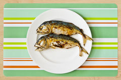 Two fried mackerel fishs Royalty Free Stock Photo