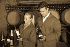 Two friendly winery employees in aging section in cellar Royalty Free Stock Photography