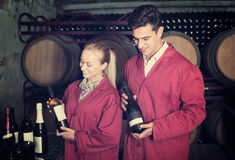 Two friendly winery employees in aging section in cellar. Two friendly winery employees in uniform holding bottles of wine in aging section in cellar Stock Photo