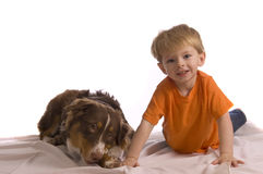 Two Friends. Caucasian toddler posing with his brown Australian Shepherd puppy. Isolated on white, looking into the camera, both model released Royalty Free Stock Photos