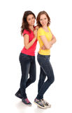 Two friends Royalty Free Stock Images