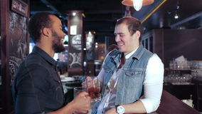 Two friends at the bar with a beer and then. Cheerful company of guys and girl celebrating at the bar. The company has a rest after work. Cheerful company relax stock footage