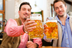 Two friends in Bavarian pub. In traditional clothes clinking steins with beer Royalty Free Stock Photo