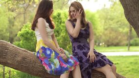 Two friends in bright summer dresses are talking in the park. The girls sit on a tree branch and kick up one`s feet. Attractive girl walking through the Park and stock video