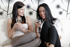 Two friends chatting over wine Stock Photography