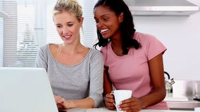 Two friends chatting and using laptop stock footage