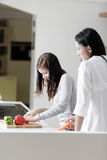 Two friends cooking together Royalty Free Stock Image