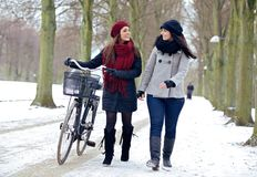 Two Friends Enjoying a Walk in a Winter Park Stock Image