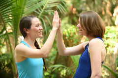 Two friends giving high five to each other Royalty Free Stock Photography