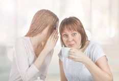 Two friends are gossiping. Girls share secrets royalty free stock photo