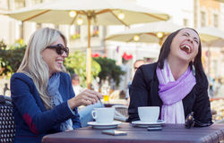 Two friends having good time Royalty Free Stock Image