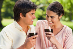 Two friends holding glasses of wine in a park Stock Photos