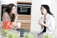 Two friends in a kitchen Stock Image