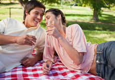 Two friends laughing as they raise their glasses during a picnic Stock Photos