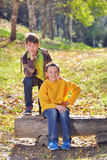 Two  friends in nature Stock Images