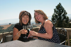 Two Friends Sharing Wine Outdoors Stock Image