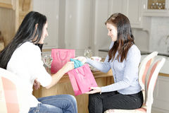 Two friends showing new clothes off Royalty Free Stock Photography