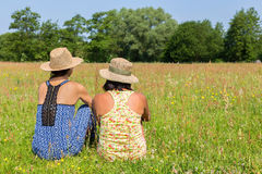 Two friends sitting together in meadow Stock Images