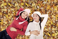 Two friends sleeping in Autumn park Royalty Free Stock Photography