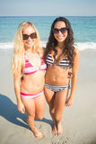 Two friends in swimsuits Royalty Free Stock Photography
