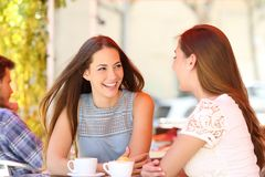 Two friends talking in a coffee shop terrace. Two friends talking looking each other in a coffee shop terrace royalty free stock photos