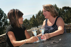 Two Friends Talking While Drinking White Wine Royalty Free Stock Image