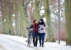 Two Friends During Their Bonding in the Cold Outdoors. Two friends outdoors enjoying their bonding time in a winter park stock photos
