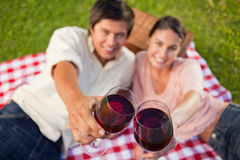 Two friends touching their glasses while raised during a picnic Stock Photo