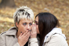 Two friends whispering secrets. Between each other Stock Image
