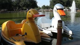 Two quiet pedal boats with bird shape. They are two friends that work being pedal boats so people can take a ride on the lake stock video footage