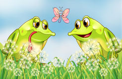 Two frogs and a butterfly at the garden Royalty Free Stock Images