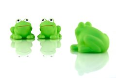 Two frogs with onlooker Royalty Free Stock Images