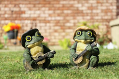 Two frogs play guitar Stock Photos