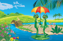 Two frogs under an umbrella floating on the Lazy river Royalty Free Stock Photography