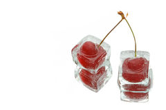 Two frozen cherries Stock Image
